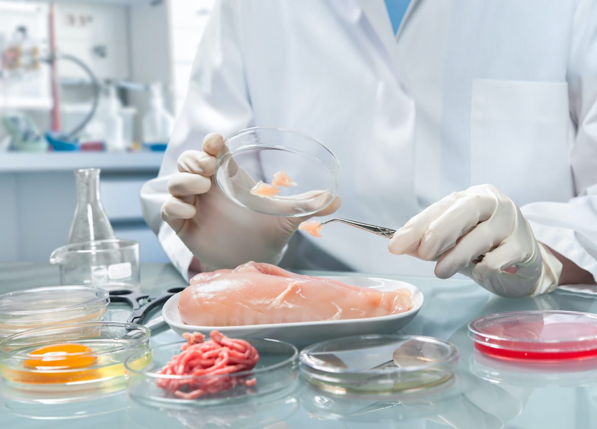technician evaluating food safety according to HACCP system